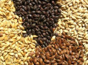 cereali-maltati