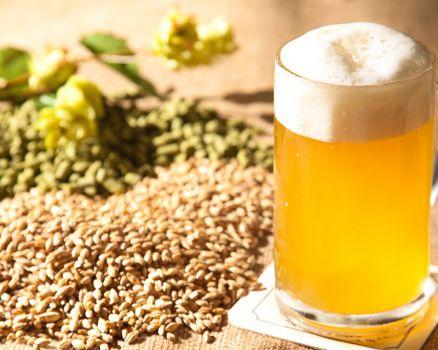 birra-ingredienti