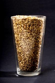 grain_in_glass_web