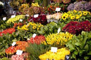 Birra artigianale e fiori alla Birroteca di Greve