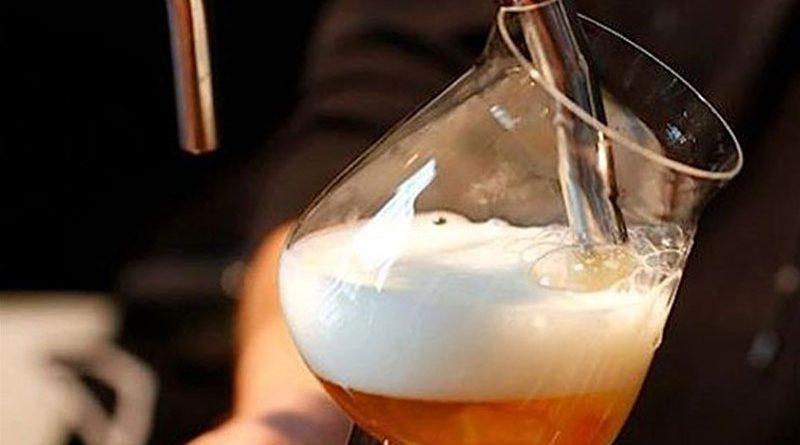 Corso sulla birra artigianale al Cescot di Modena