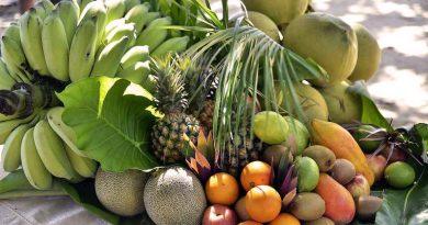 I frutti esotici caratterizzano la produzione craft del Brasile