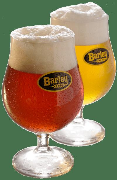 Birre artigianali Barley