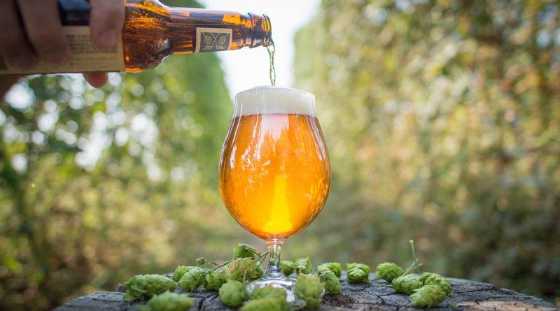 """La natura """"onnibibula"""" dei bevitori di birra artigianale americana"""